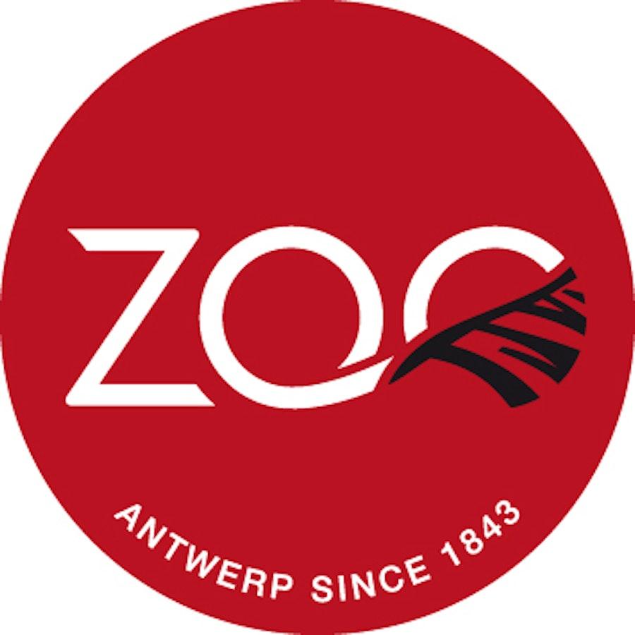 Zoo Antwerpen Antwerpen 18 Antwerpen Uitmetvlieg Be