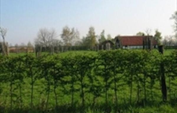 Provinciaal Domein De Averegten