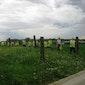 Glabbeek wandelt 2017: Veeweidewandeling