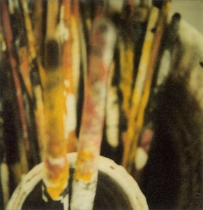 Cy Twombly. Photographs 1951 - 2010. With guest artist : Tacita Dean