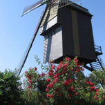 Windmolen Hertboom - Zepposmolen
