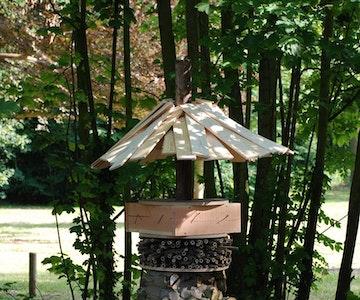 Compostdemo: bouw mee aan onze beestentoren