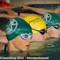 Zwemloop Scherpenheuvel