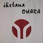 Ikebana (beginners)