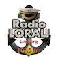 Muziekparels 4, 35 jaar lokale radio in Limburg