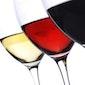 Wijndegustatie 'Savoie'