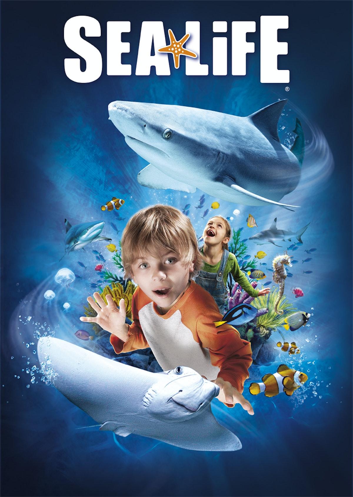 Afbeeldingsresultaat voor sealife blankenberge