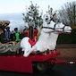 Sinterklaasstoet