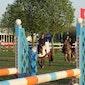 Beker van Lummen voor de Paardensport