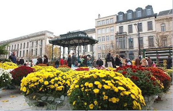 Dagelijkse bloemenmarkt - Gent