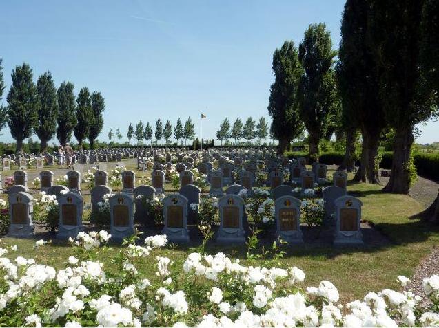 Evenement Belgische Militaire Begraafplaats Steenk
