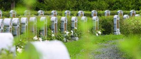 Evenement Belgische Militaire Begraafplaats Ramska
