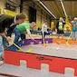 Regionale sportdag Vitamin te Rotselaar