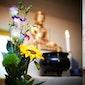 Meditatievoormidag in ZenBoeddhistisch Centrum Halle