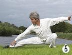 Meridiaan Chi Kung, 5 elementen Yoga & vitaliteit jaartraining