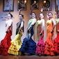 Tapas & Flamenco CAMINO FLAMENCO