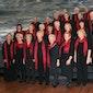 Canticamare Ensemble Evergreens in vele tinten