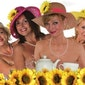 Loge 10 - Calendar Girls - UITVERKOCHT