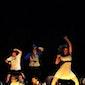 Dansshow studio Danza