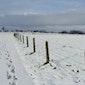 Winterwandeling Natuurpunt Keerbergen