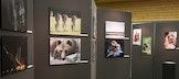 Een Kunstmuur vol foto's