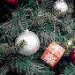 Poco Loco 3-12 jarigen kerstvakantie