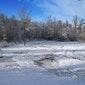 Winterwandeling in Vorsdonkbos-Turfputten