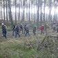 Wandelen door het bos en over de heide