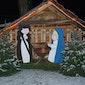Kerstdrink De Weehaege met wedstrijd Touwtrekken