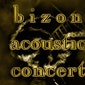 Bizon Blues Concert: Allison Morreale (BEL)