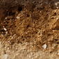 BEMESTINGSADVIES + BESPREKING RESULTATEN BODEMANALYSE door VELT Geraardsbergen