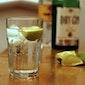 Vorming - Gin & Tonic tasting