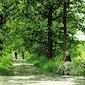 Fietsen door het landschapspark Bulskampveld
