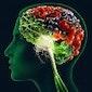 De invloed van voeding op je geestelijk welzijn