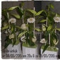 workshop bloemschikken: op de uitkijk