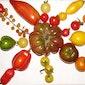 Tomaten moeten niet rood en rond zijn! Teelt van bijzondere tomaten.