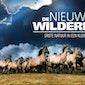 Filmavond: De Nieuwe Wildernis