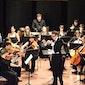 Nieuwjaarsconcert De Weense Klassiekers