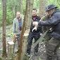 Groenhout houtoogst (Oudenaarde)