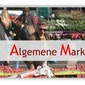 Feestmarkt Borgerhout (Gitschotellei)