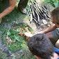 Prehistorisch koken in en met de natuur (Oudenaarde)