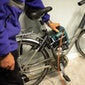 Gratis fietsgraveeractie