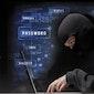 Cybercriminaliteit in België. Overleven in een wereld van hackers en internetfraudeurs