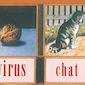 Lezing: Digitale boekenkast (e-boeken)