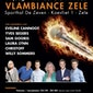 Vlambiance Zele 2015