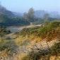 Grensoverschrijdende wandeling in de Dune Marchand