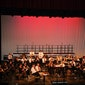 Concert: Er was eens ... Peter en de wolf