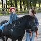 Ponygewenning voor kleuters