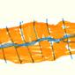 Vormingsmomenten voor mantelzorgers 2015: Het lege nest syndroom