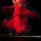 Initiatie Flamenco
